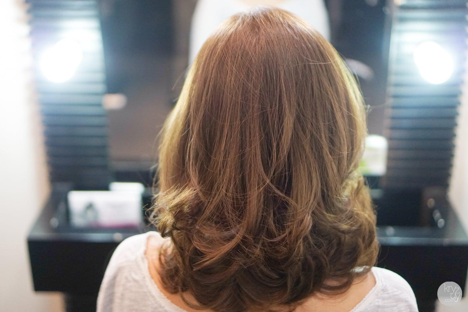 Asian Brown Hair 58