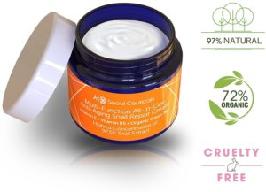Mizon All In One Snail Repair Cream Review Updated 2020