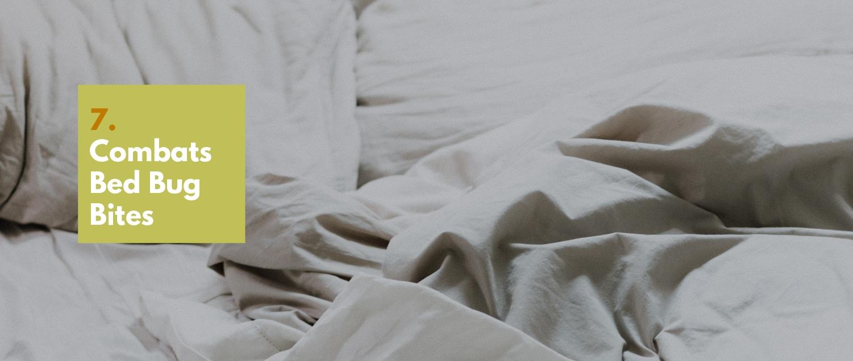 7. Combats Bed Bug Bites