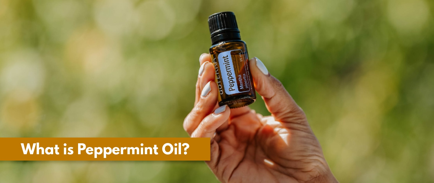 What is Peppermint Oil