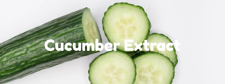 Cucumber Extract