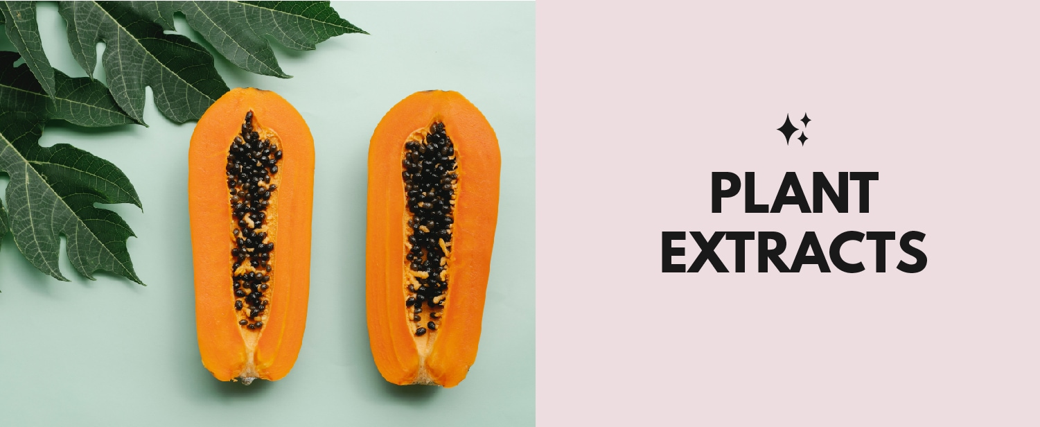 4. Plant Extracts